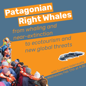 Southern Right Whales Lecture