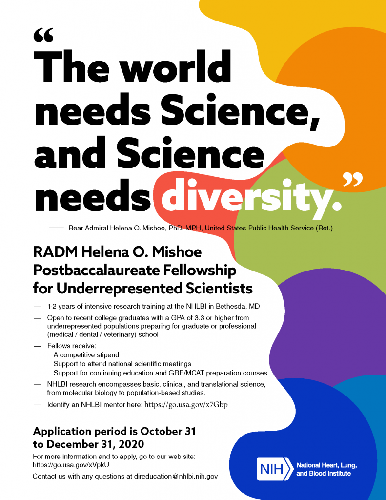 Flyer of Mishoe Fellowship Opportunity