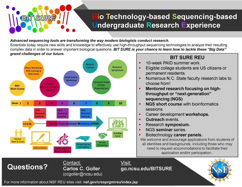 Informational flyer for the BIT SURE 2021 program