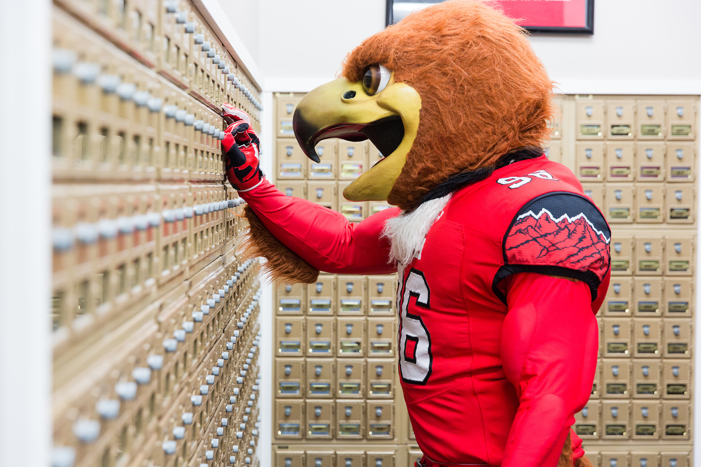 Swoop by the mailboxes