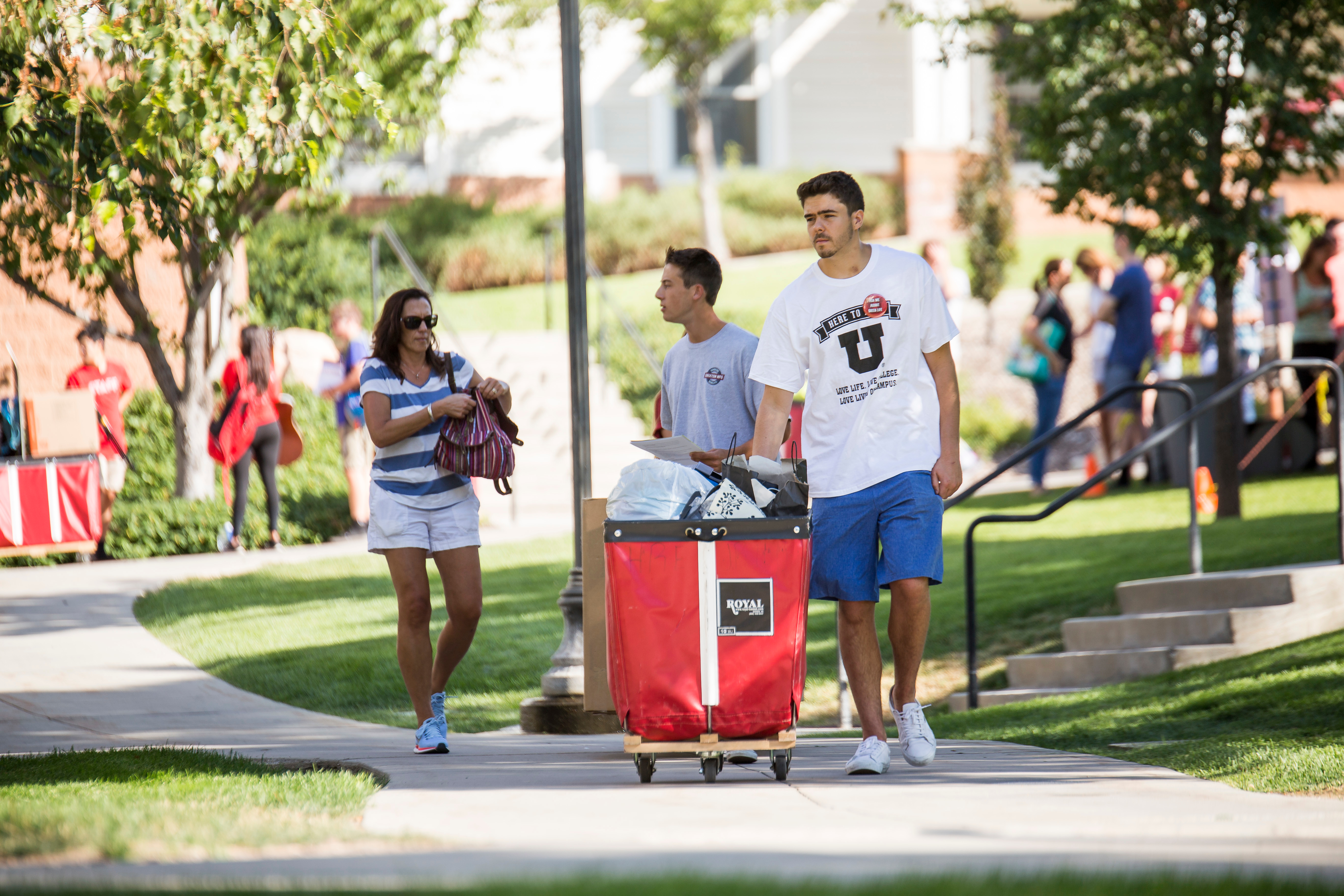 Students moving into on-campus housing
