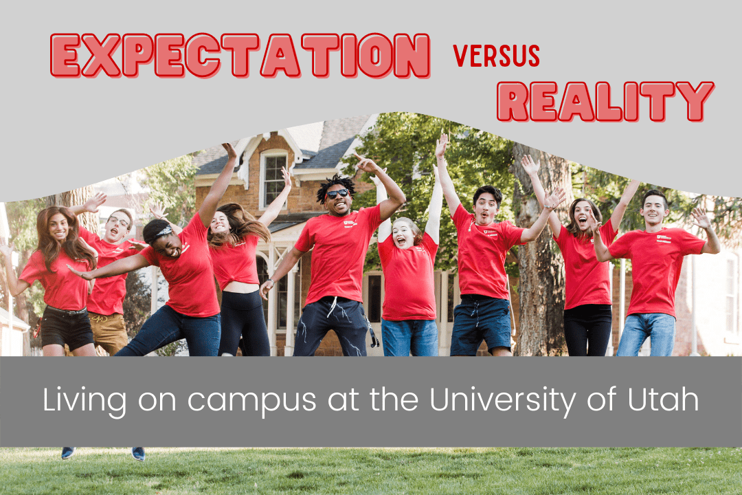 Expectation v. Reality Blog Post graphic